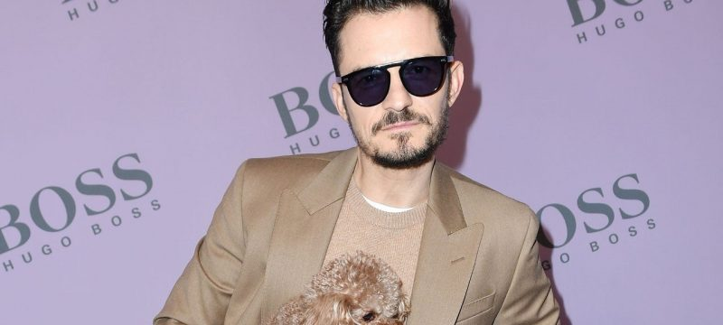 Orlando Bloom Opens Up About New Foster Dog Following Dog Mighty's Death