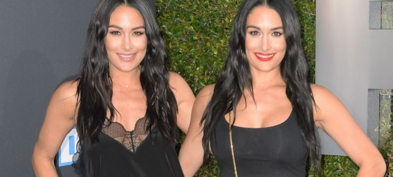 Nikki and Brie Bella Have Different Answers on Whether They'd Let The Other Breastfeed Their Baby