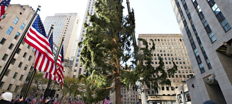 Rockefeller Center Posts Epic Clapback After 2020 Christmas Tree Goes Viral for All the Wrong Reasons