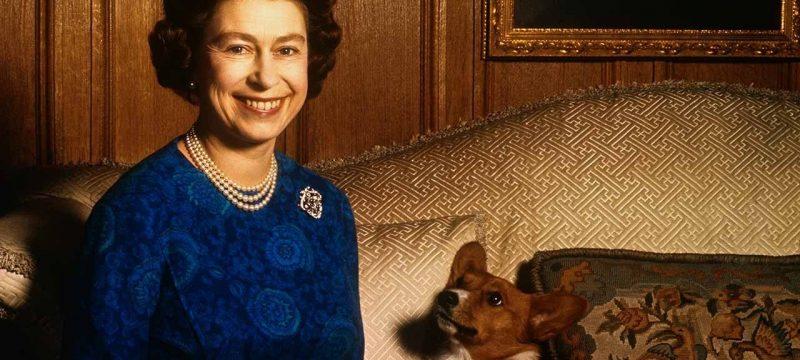 Queen Elizabeth's Dorgi Dies Weeks After Death of Prince William and Kate Middleton's Dog